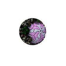 Rotavirus particle, artwork Mini Button