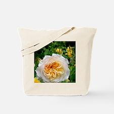 Rose flower (Rosa sp.) Tote Bag