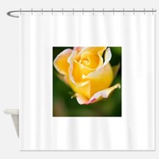 Rose (Rosa) Shower Curtain