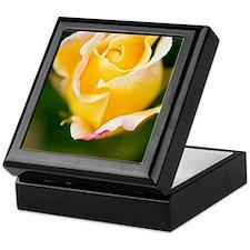 Rose (Rosa) Keepsake Box