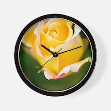 Rose (Rosa) Wall Clock