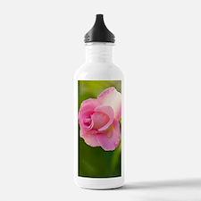 Rose (Rosa) Water Bottle