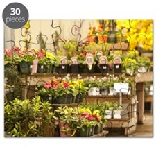 Flowers in a garden store Puzzle