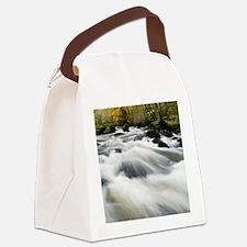 River Teign in autumn, Devon Canvas Lunch Bag