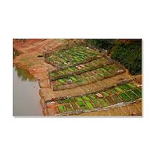 River garden, Laos Car Magnet 20 x 12