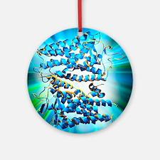Rhodopsin protein molecule Round Ornament
