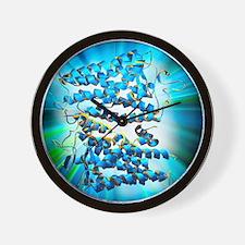 Rhodopsin protein molecule Wall Clock