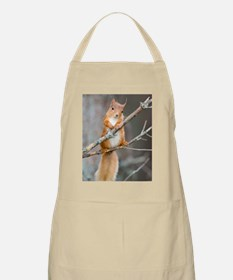 Red squirrel on a branch Apron