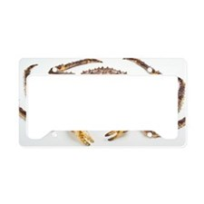 Red king crab License Plate Holder