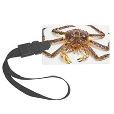 Red king crab Luggage Tag