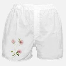 Red clover (Trifolium pratense) Boxer Shorts