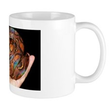 Rainbow boa Mug