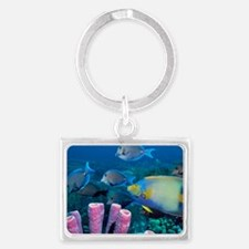 Queen angelfish and blue tangs Landscape Keychain