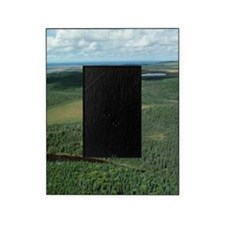 High angle view of forest Picture Frame