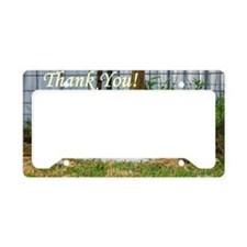 Buddy Lambs ~ Thank You! License Plate Holder
