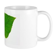 Quaking Aspen (Populus tremuloides) lea Mug