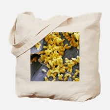 Pseudomonas aeruginosa bacteria, SEM Tote Bag