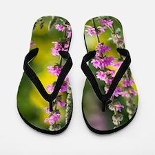 Purple loosestrife Flip Flops