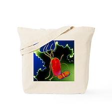 Proteus bacteria Tote Bag