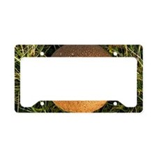 Puffball fungus License Plate Holder