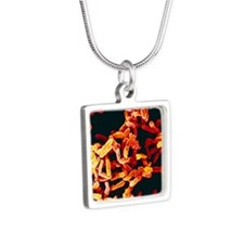 Pseudomonas aeruginosa bac Silver Square Necklace
