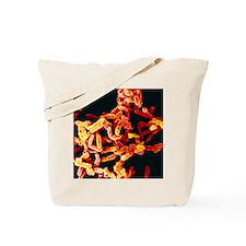 Pseudomonas aeruginosa bacteria Tote Bag