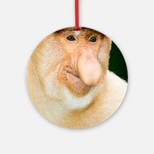 Proboscis monkey Round Ornament