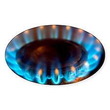 Propane burner Decal