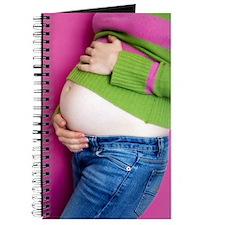 Pregnant woman Journal