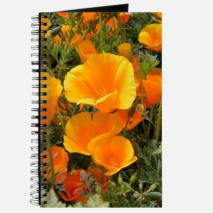 Poppies (Eschscholzia californica) Journal