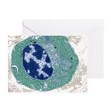 Plasma cell, TEM Greeting Card