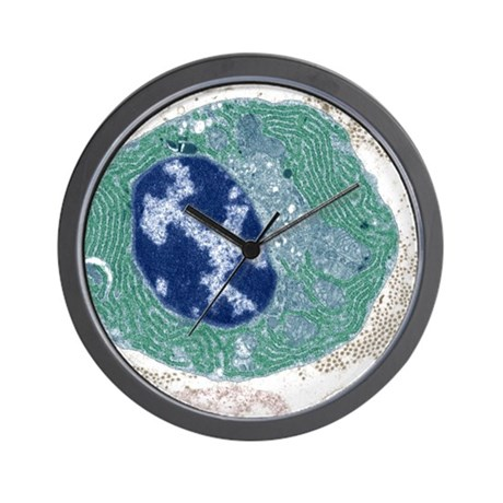 Plasma cell, TEM Wall Clock by Admin_CP66866535
