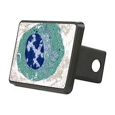 Plasma cell, TEM Hitch Cover
