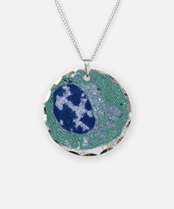 Plasma cell, TEM Necklace