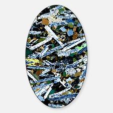 Plutonic rock, light micrograph Decal