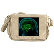 Pituitary gland in the brain, artwor Messenger Bag