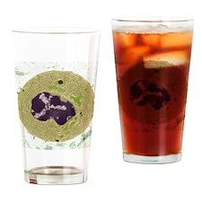 Plasma cell, TEM Drinking Glass