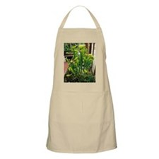 Pitcher plants Apron