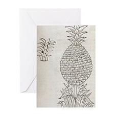 Pineapple, 16th century artwork Greeting Card
