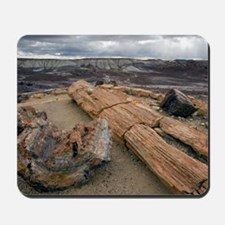 Petrified wood Mousepad