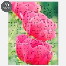 Peony (Paeonia 'Scarlet O' Hara') Puzzle