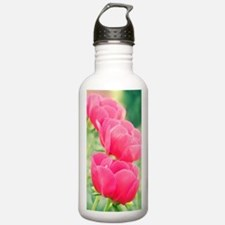 Peony (Paeonia 'Scarle Water Bottle