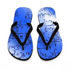 Particle physics equations Flip Flops