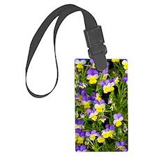 Pansy flowers (Viola x wittrocki Luggage Tag