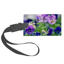 Pansies (Viola x wittrockiana) Luggage Tag