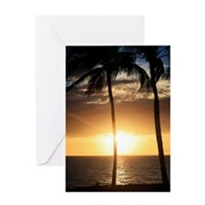 Palm trees on a beach at sunset Greeting Card