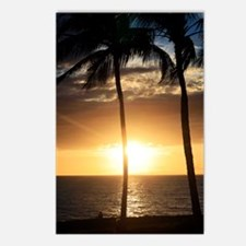 Palm trees on a beach at  Postcards (Package of 8)