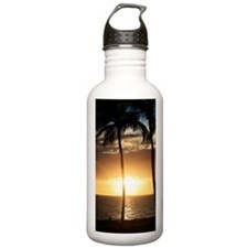 Palm trees on a beach  Water Bottle