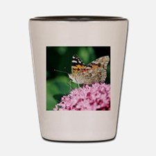 Painted Lady butterfly Shot Glass