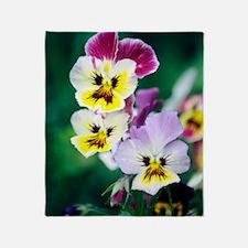 Pansies (Viola wittrockiana) Throw Blanket